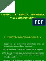 Capitulo II Estudio de Impacto Ambiental