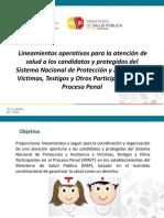 LINEAMIENTOS OPERATIVOS PARA LA ATENCION DE SALUD A LOS CANDIDATOS Y PROTEGIDOS DEL SISTEMA NACIONAL DE PROTECCION Y A