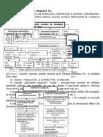 Anemia prin carenţa vitaminei  B12.doc