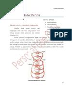 sistem-pembuluh-daraf-perifer-nita.pdf