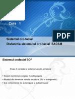 C1 EPR - SADAM.pptx