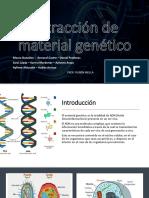 Extracción de Material Genético