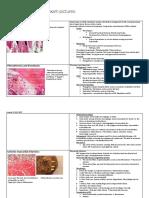 Pathological Anatomy Exam Pictures