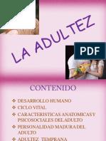 Sesión N° 14. Adultes.pptx