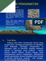 Pengamatan Lapangan Fosil