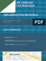 Proyecto de Organización Industrial