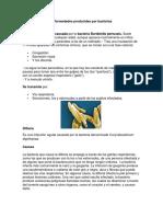 Enfermedades Producidas Por Bacteria1