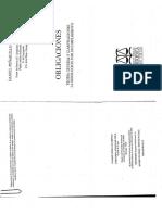Pe_ailillo_Obligaciones_388_431.pdf