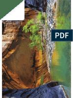 Zion Narrows Rock River Trees Landscape 5184x3456