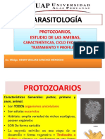 2 Semana Parasitologia