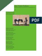 Evaluación Sobre Textos Poéticos