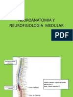 Clase Medula p2