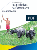 Experiencias Produtivas de Agricultores Familiares Da Amazonia Segunda Edicao