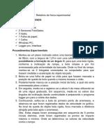 Relatório 3 de Física Experimental 2