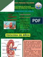 exposicion-Farmacognosia