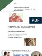 Psicopatologias de Agresividad1