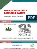 CLASE-7-TOXICOLOGIA-DE-LA-CANNABIS-SATIVA.pptx