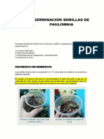 Manual Paso a Paso Germinacion Paulownia Fercoimport