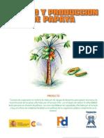 Cartilla+Cultivo+y+Produccion+Papaya[1]