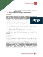 328923150-Sales-de-Diazonio.docx