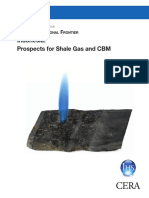 Study Shale Gas 210 Indo