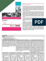 MATRIZ DE LAS AREAS CURRICULARES    -CN.pdf