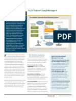 FM Vision.pdf
