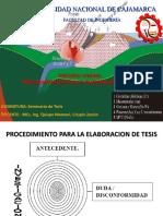 PROCEDIMIENTO PARA LA ELABORACION DE TESIS(1).pdf