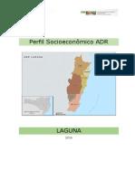 Perfil Socioeconômico ADR Laguna 250117