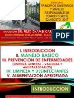 CRIANZA DE PERROS Y GATOS VENTILLA1.pptx