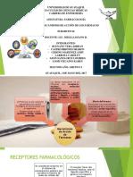 Grupo 4 Mecanismo de Accion de Los Farmacos