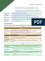 Dimensiones Por Competencias - Profes