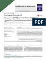 Diarheagenic E Coli