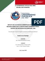 CORZO_REMIGIO_AMELIA_IMPACTO_MINEROS (1).pdf