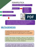 MUTAGÉNESIS