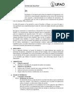 363320624-Informe-Puente-Palitos-1.docx