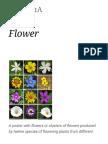 Flower - Wikipedia.pdf