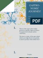 1. Gastronomic Journey_Q&A