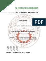 informe_de_quimica_2[1]