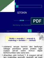 266650116-SITOKIN-ppt