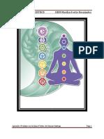 Manual Sintonización Con Los Circuitos Maestros Para Trabajar Con La Llama Violeta