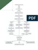 Mapas conceptuales sobre vida y trascendencia