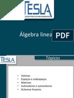 Lgebra Linear 1