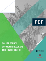 Collier County needs assessment