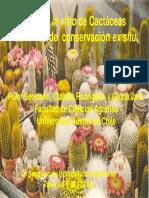 Cultivo in Vitro de Cactaceas Con Fines de Conserv