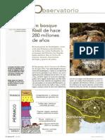 Quercus_377_julio_2017_bosque_fosil_r.pdf