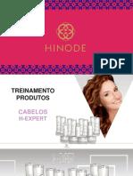 Treinamento Oficial H Expert.pdf