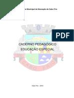 cadernopedaggico-educaoespecial-160505002718 (1).pdf