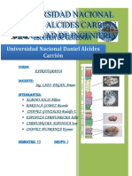 Informe Pasco Carhuamayo