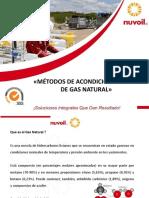 105869220 Acondicionamiento de GAS NATURAL